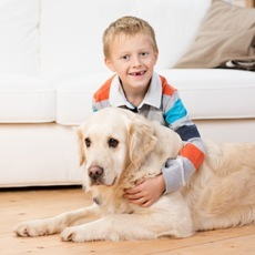 pet safe and kid safe pest control services
